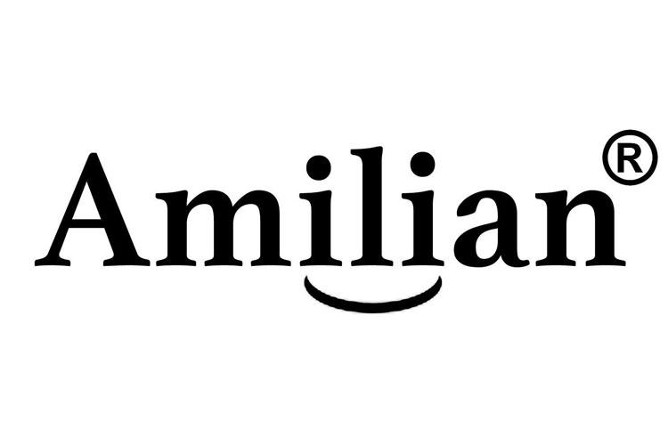 Amilian protège sommier test